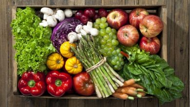 Comparison between Caloric Restricted and Plant-Based Diet for healthy weight